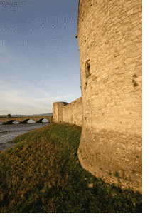 Limerick City Walls Conservation and Management Plan
